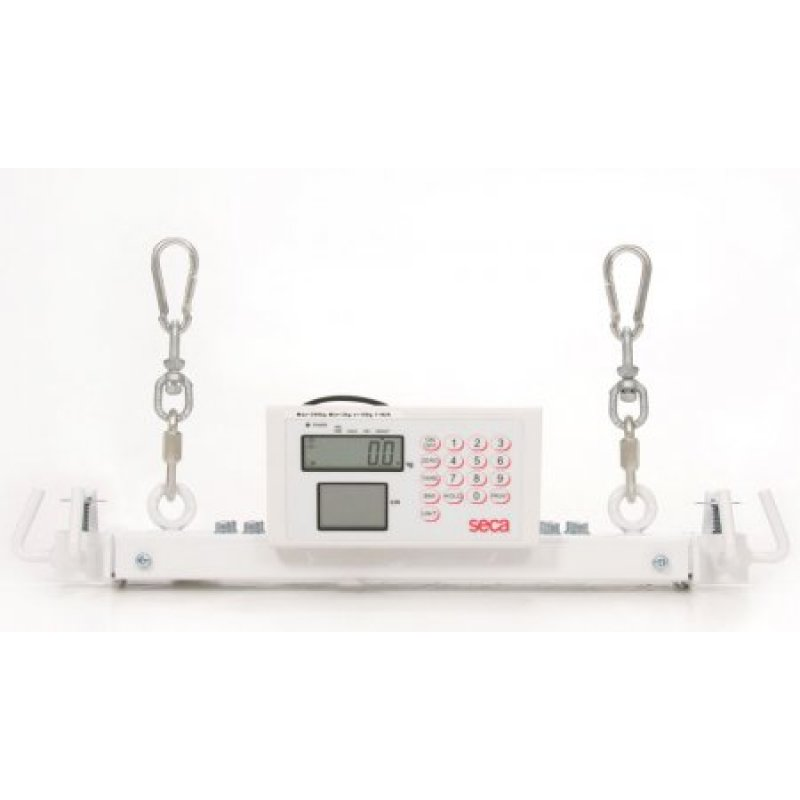 Weigh Scale for Mobile Hoist